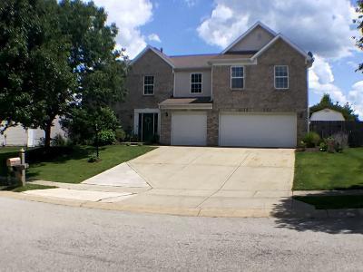 Noblesville Single Family Home For Sale: 19282 Roudebush Boulevard
