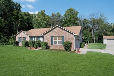 Mooresville Single Family Home For Sale: 10745 North Holland Drive S