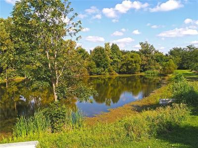 Sheridan, Fortville, Carmel, Noblesville, Atlanta Residential Lots & Land For Sale: 16478 Southeastern Parkway