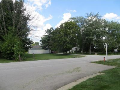 Noblesville Commercial Lots & Land For Sale: 10834 East 141st Street