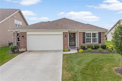 Mc Cordsville, Mccordsville Single Family Home For Sale: 14127 Stoney Shore Avenue