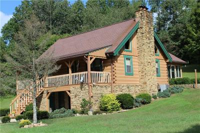 Morgan County Single Family Home For Sale: 4800 State Road 39