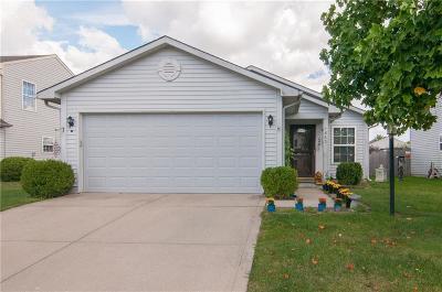 Greenwood Single Family Home For Sale: 1643 Long Lake Drive