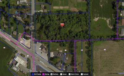 Indianapolis Commercial Lots & Land For Sale: 2345 South Arlington Avenue