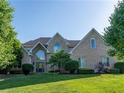 Zionsville Single Family Home For Sale: 7438 Fox Hollow Ridge