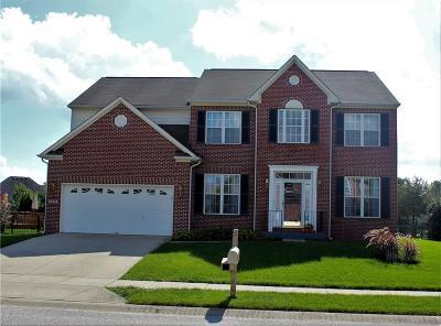 Avon Single Family Home For Sale: 8547 Charleston Court