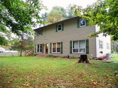 Putnam County Single Family Home For Sale: 11657 South Meridian Line Road