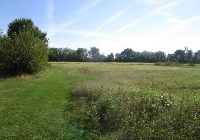 Fortville Residential Lots & Land For Sale: 905 South Maple Street