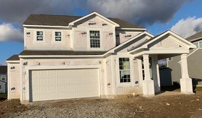 Whitestown Single Family Home For Sale: 6742 Park Grove Boulevard