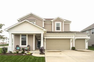 Whitestown Single Family Home For Sale: 6705 Park Grove Boulevard