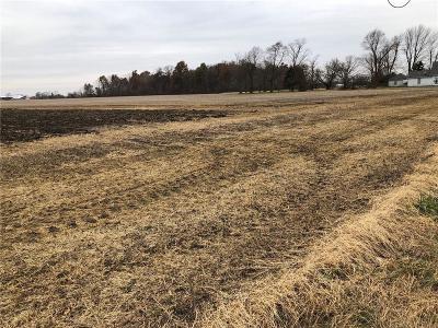 Hancock County Farm For Sale: 6690 North 500 W