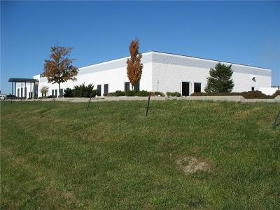 Brownsburg Commercial For Sale: 554 Pit Road