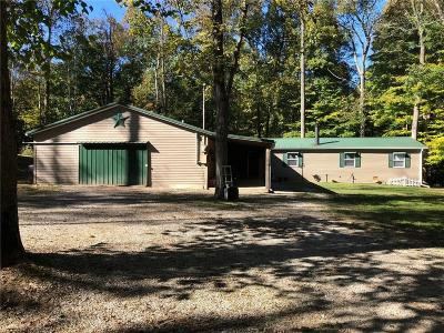 Owen County Single Family Home For Sale: 2699 Straight Line Road