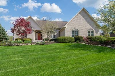 Indianapolis Single Family Home For Sale: 8951 Summer Estate Drive