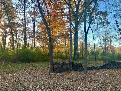 Indianapolis Residential Lots & Land For Sale: 5107 Grandview Drive