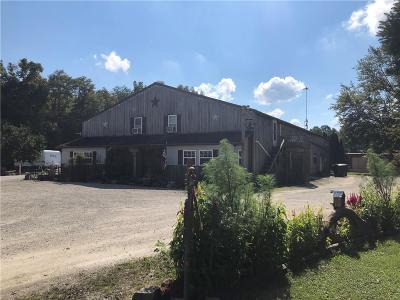 Decatur County Commercial For Sale: 8941 East County Road 400 N