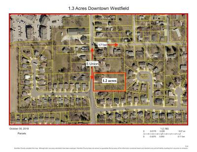 Hamilton County Residential Lots & Land For Sale: 608 South Union Street