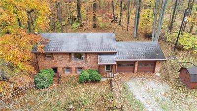 Mooresville Single Family Home For Sale: 8383 North Goat Hollow Road