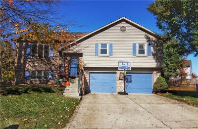 Marion County Single Family Home For Sale: 668 Sundial Circle