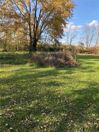 Henry County Residential Lots & Land For Sale: 2216 N Avenue