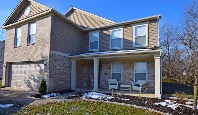 Fortville Single Family Home For Sale: 540 Flint Boulevard