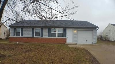 Franklin Single Family Home For Sale: 2713 Branigin Creek Boulevard