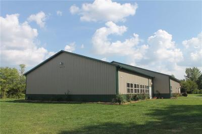 Indianapolis Commercial For Sale: 6337 East Hanna Avenue