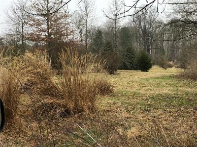 Zionsville Residential Lots & Land For Sale: 1976 North 1100 Road E