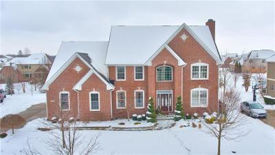 Fishers Single Family Home For Sale: 10297 Forest Meadow Circle