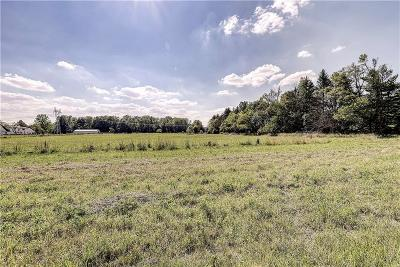 Zionsville Residential Lots & Land For Sale: 2424 South 875 E