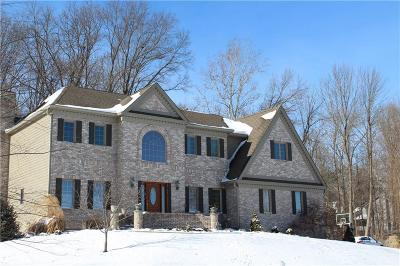 Martinsville Single Family Home For Sale: 2666 Grey Fox Drive