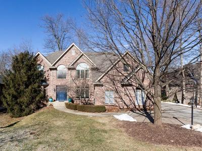 Mc Cordsville, Mccordsville Single Family Home For Sale: 9817 Springstone Road