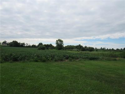Danville Residential Lots & Land For Sale: 4141 West Us Highway 36