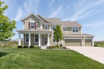 Fishers Single Family Home For Sale: 14379 Pendragon Way