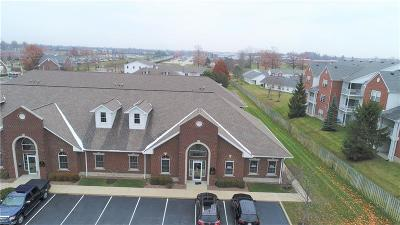 Indianapolis Commercial For Sale: 9515 East 59th Street