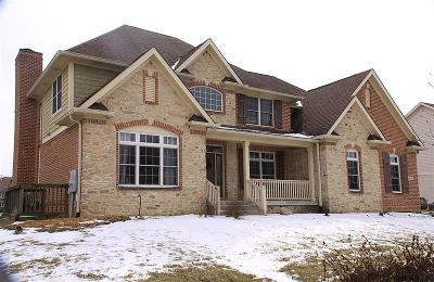 Fishers Single Family Home For Sale: 13653 Alston Drive