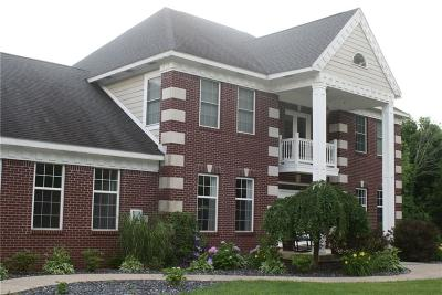 Henry County Single Family Home For Sale: 6636 West County Line Road