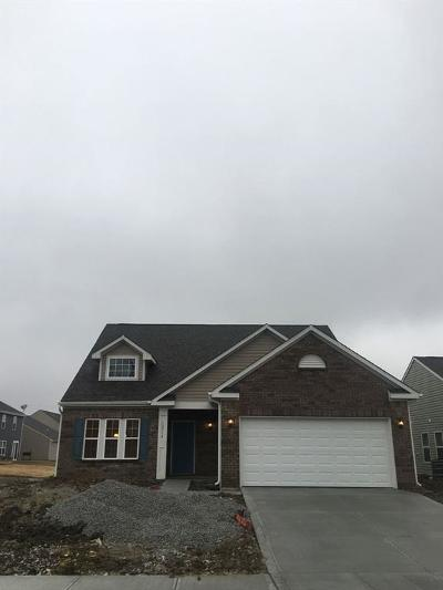 Indianapolis Single Family Home For Sale: 12314 Falling Leaves Trail