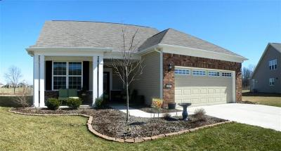 Plainfield Single Family Home For Sale: 4105 Amaryllis Drive