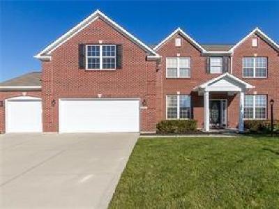 Mc Cordsville, Mccordsville Single Family Home For Sale: 9709 Brook Meadow Drive