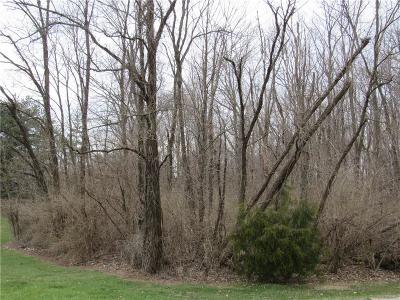 Mooresville Residential Lots & Land For Sale: North Cedarview Drive