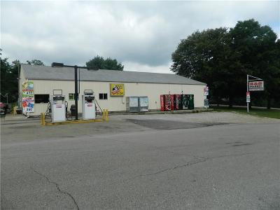 Lawrence County Commercial For Sale: 4339 Leesville Road