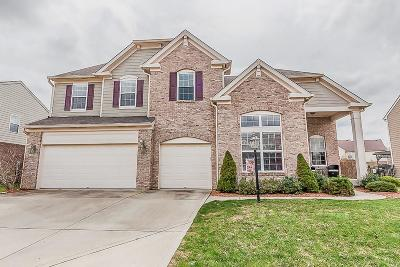 Brownsburg Single Family Home For Sale: 351 Prebster Drive