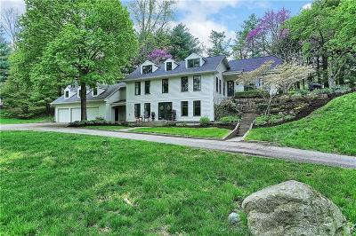 Zionsville Single Family Home For Sale: 5302 Turkey Foot Road
