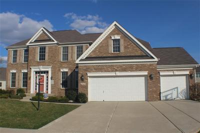 Fishers Single Family Home For Sale: 13679 Mallorn Circle