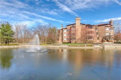 Condo/Townhouse For Sale: 8555 One West Drive #206