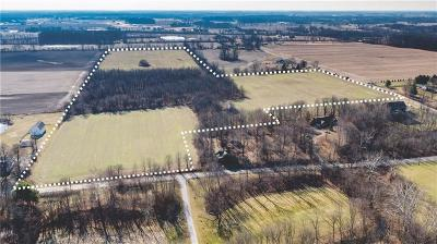 Zionsville Residential Lots & Land For Sale: East 300 S