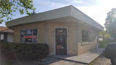 Indianapolis Commercial For Sale: 2902 South Holt Road