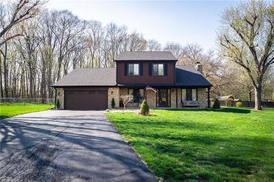 Plainfield Single Family Home For Sale: 8032 Filly Lane