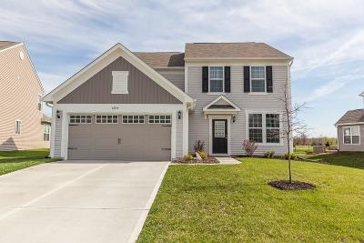 Whitestown Single Family Home For Sale: 6924 Park Grove Boulevard